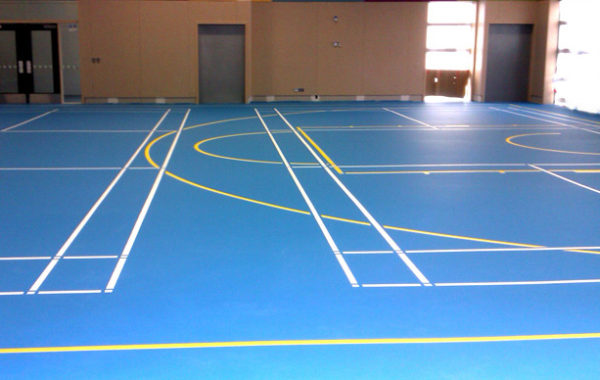 Gym Surfacing Artificial Cape Town Synsport